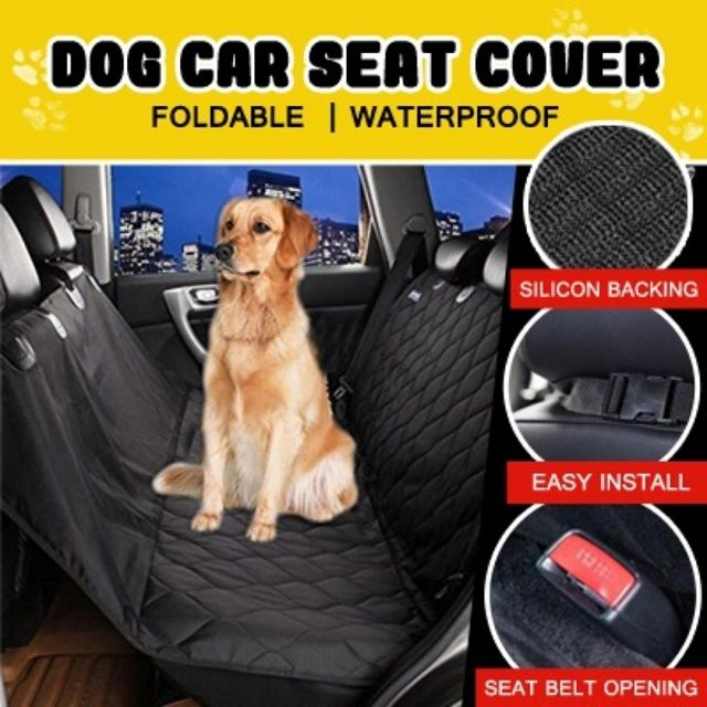 Images and Photos  Truck Accessories for Dogs